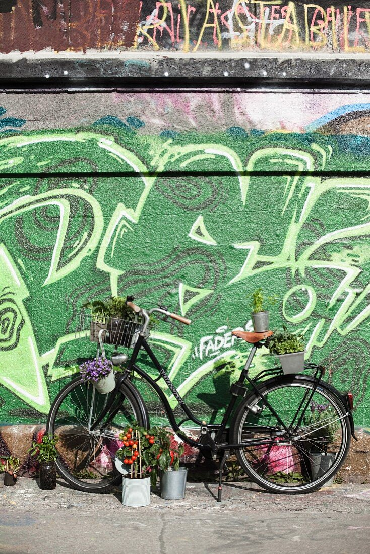 Bicycle decorated with plants in front of wall covered in graffiti in city setting