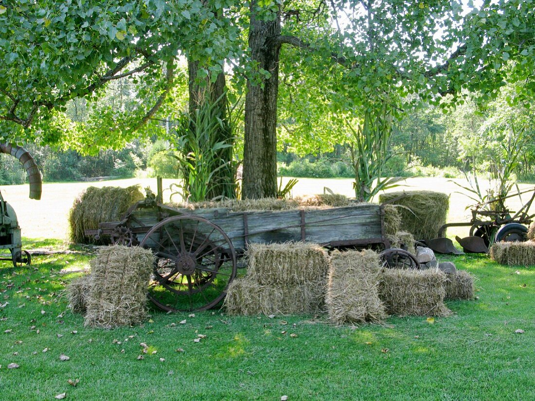 Hay wagon and bales of straw