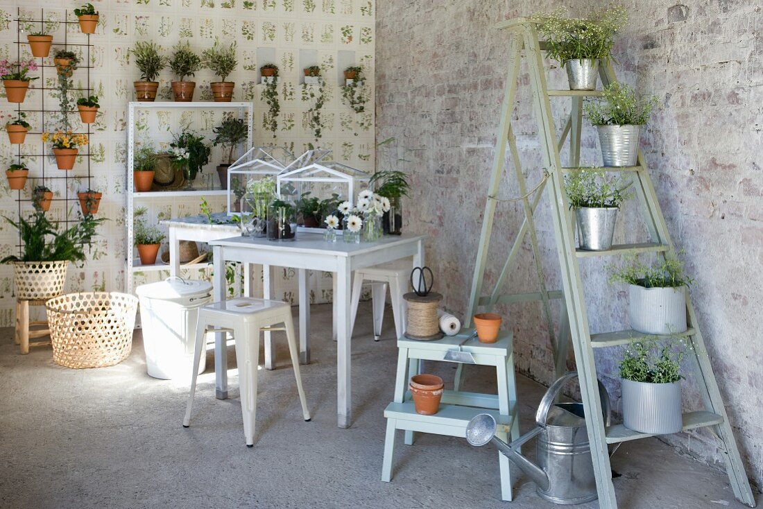 Plants in zinc pots on stepladder, gardening utensils, small tables and shelves of plants in vintage interior