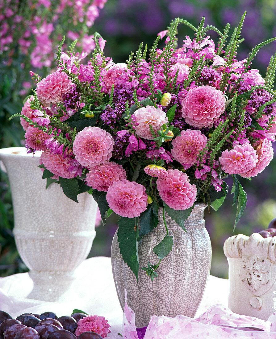 Dahlia 'Charles Dickens' (Ball Dahlia), Physostegia (Artificial Flower)