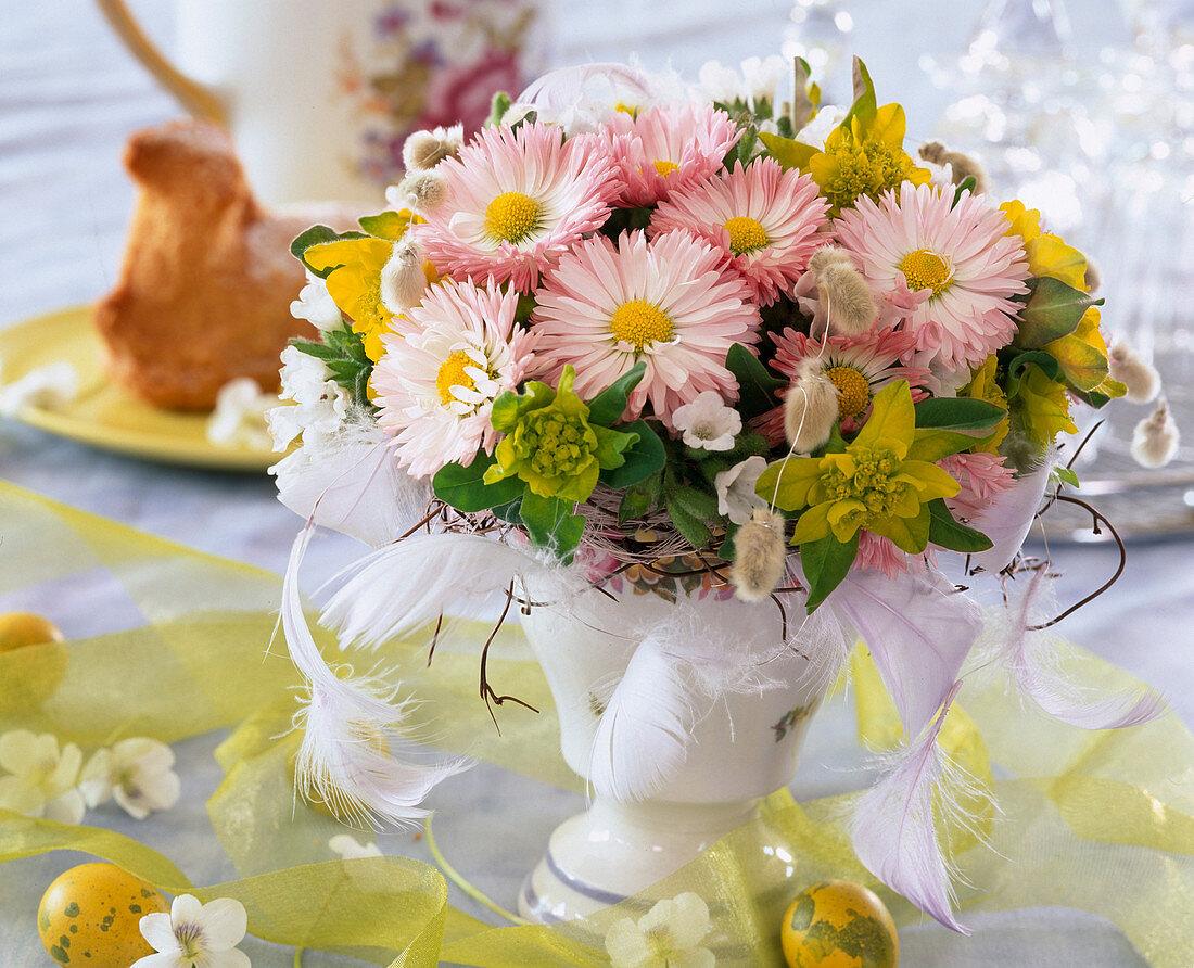 Bellis (daisies)