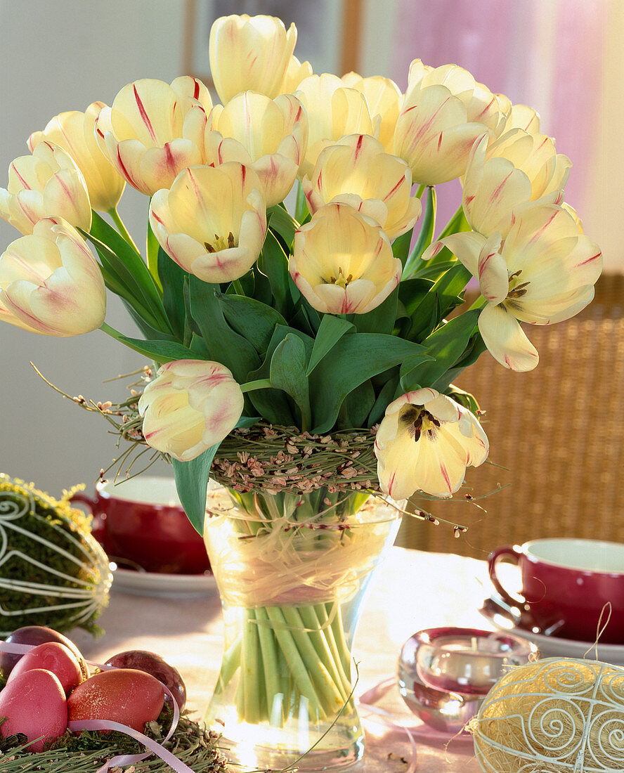 Tulip bouquet Tulipa hybrid