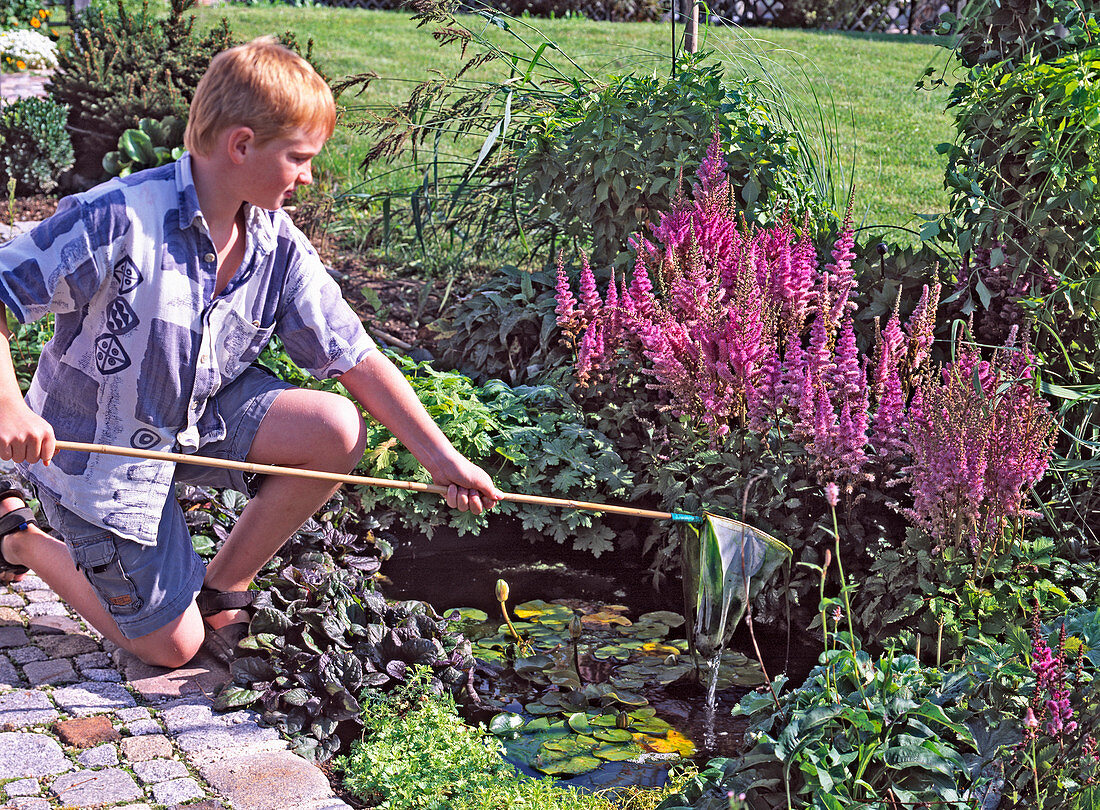 Boy fishes algae from miniature pond