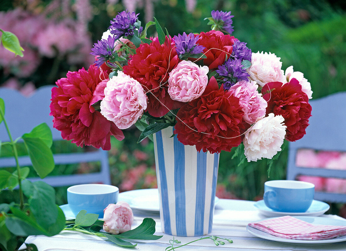 Red and pink Paeonia (peony) bouquet, Campanula