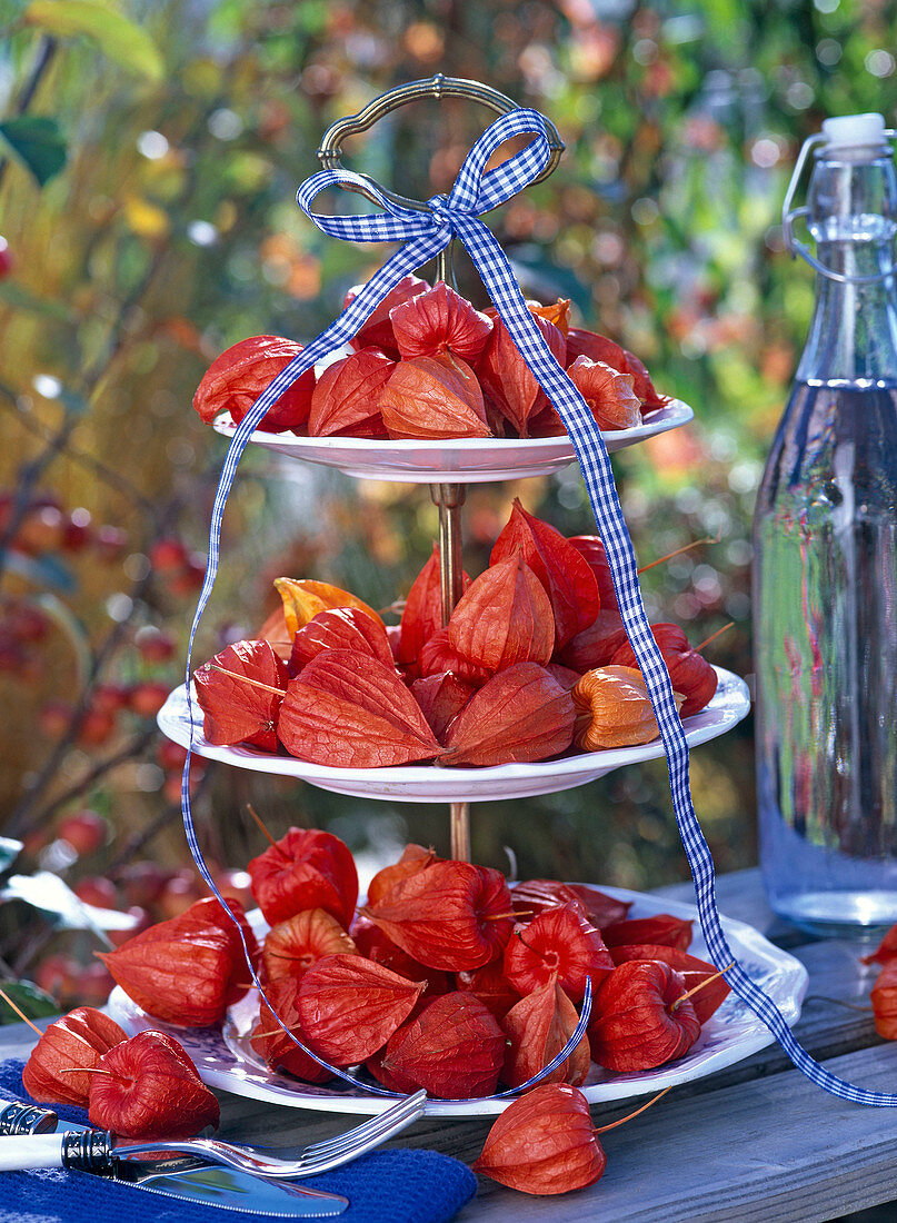 Physalis on white cake rack, decorated with plaid ribbon, cutlery