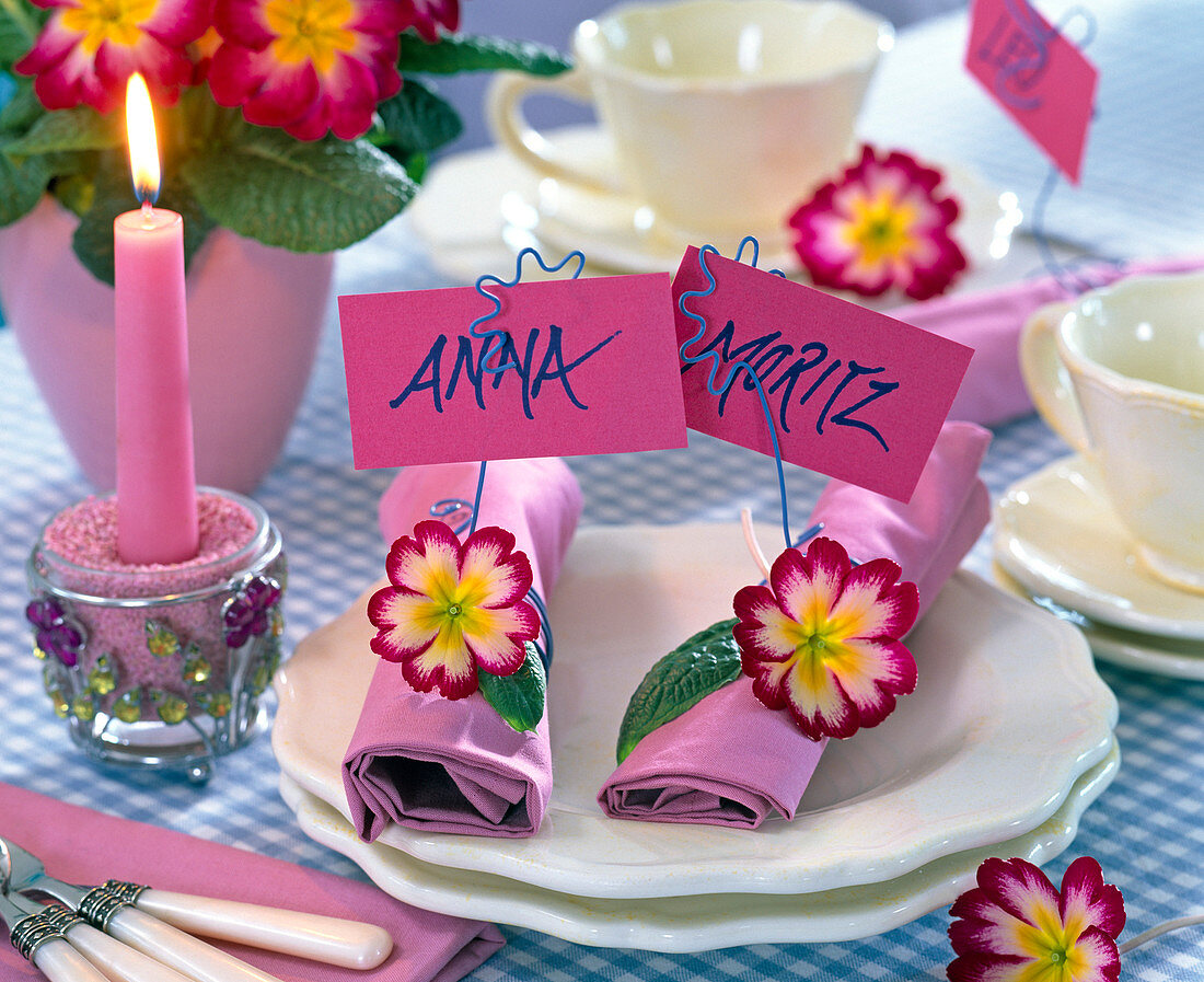 Primrose table top, napkin rings bent wire