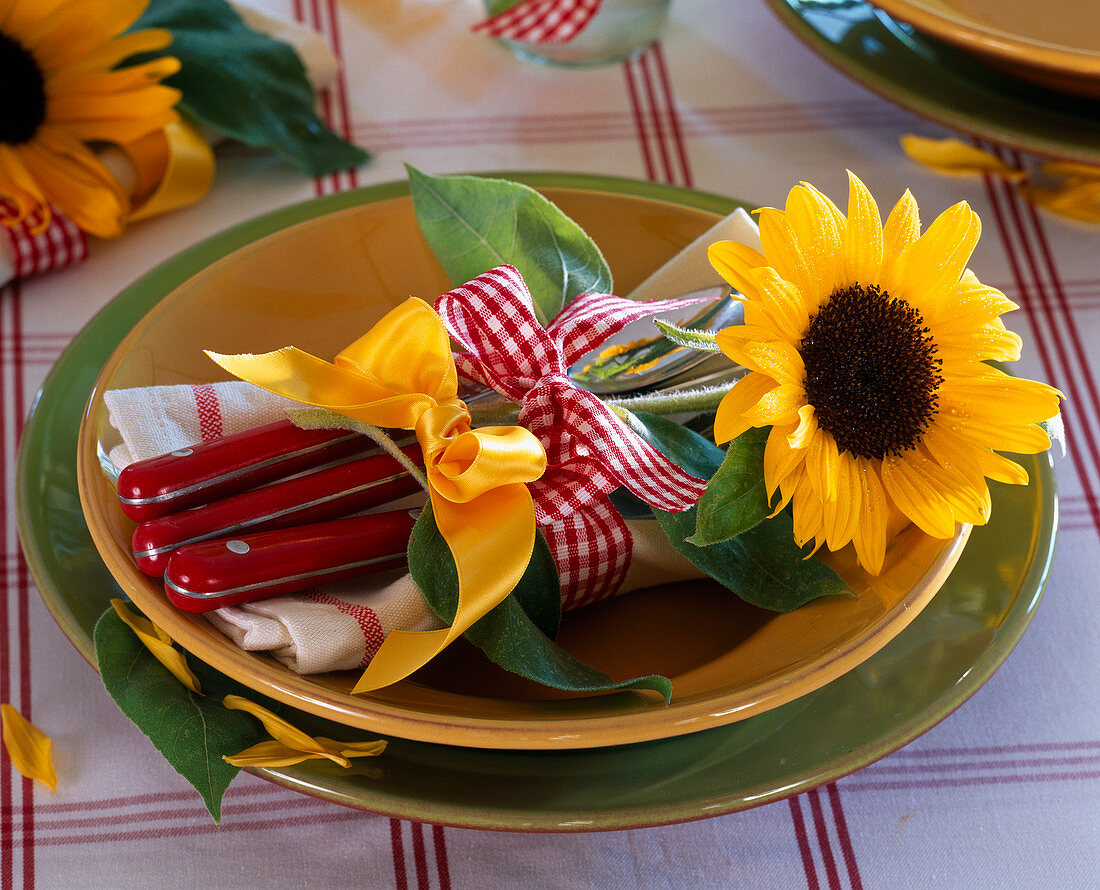 Blossom of Helianthus tied with ribbons at assembly