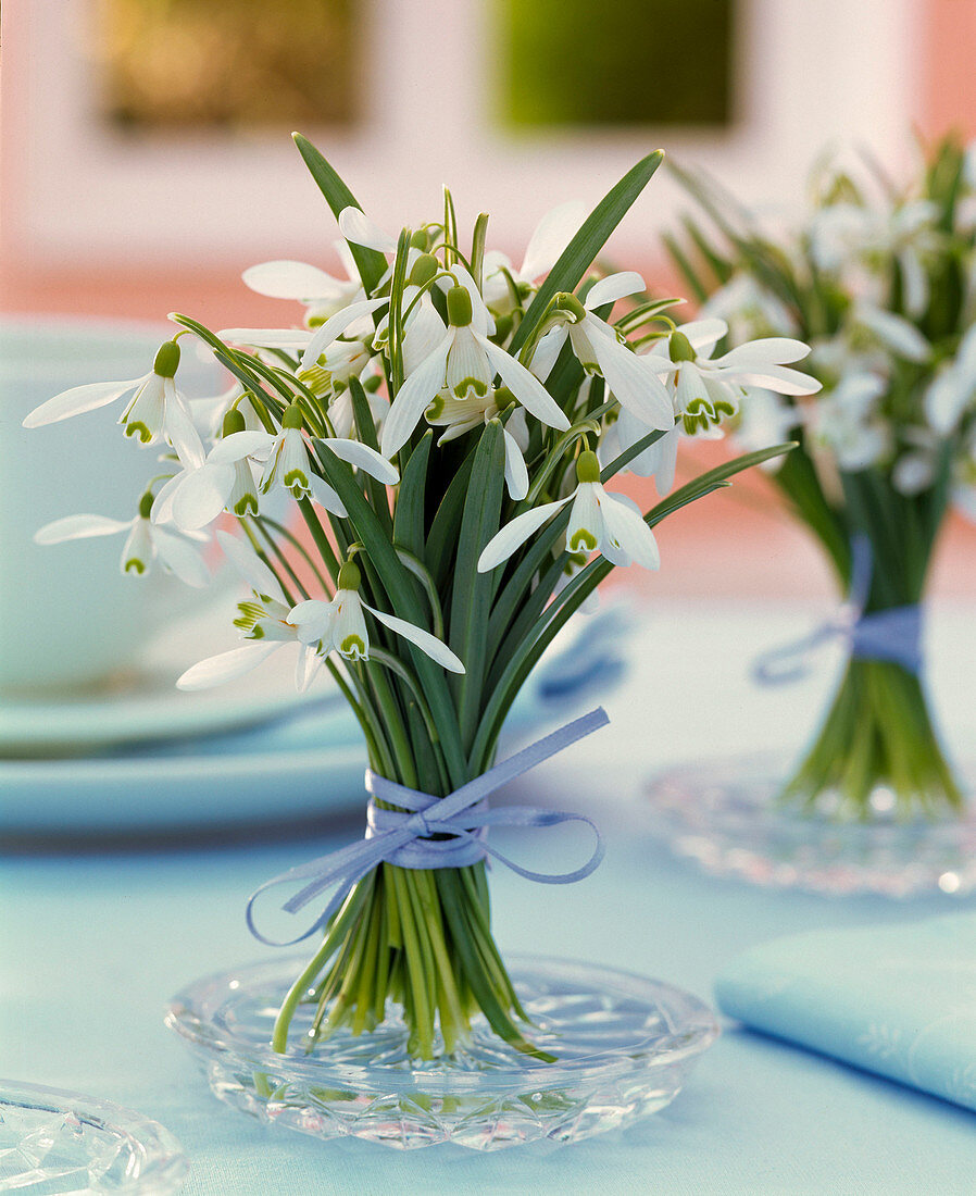 Small galanthus bouquet on glass plate