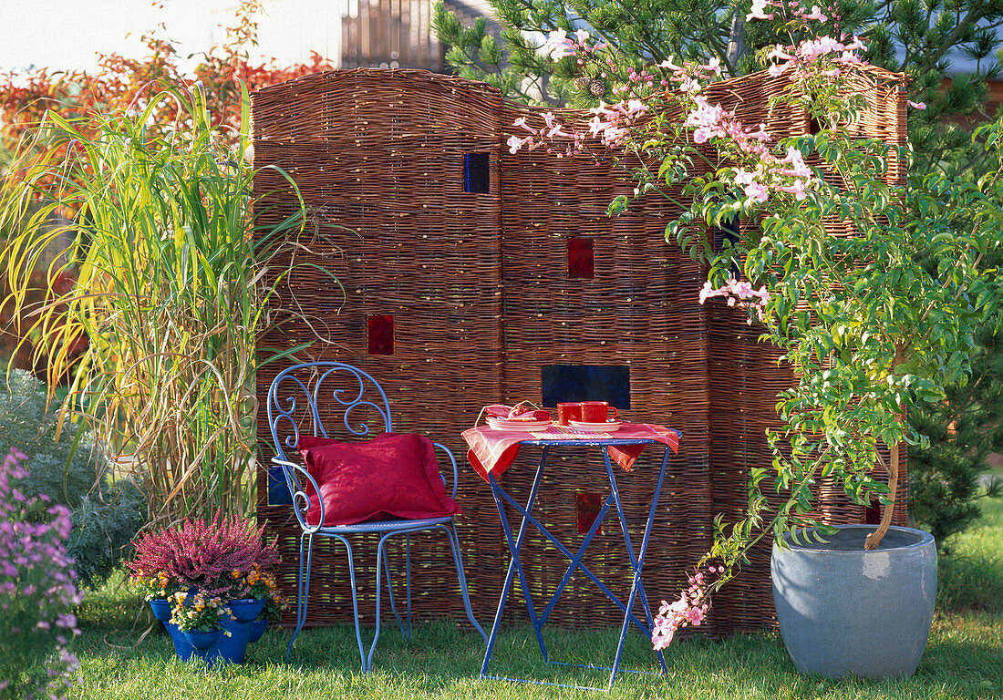 Patio with wicker walls, Miscanthus (miscanthus)