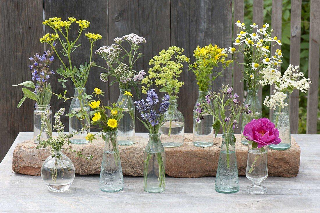 Flowering herbs for herbal bushes in small bottles