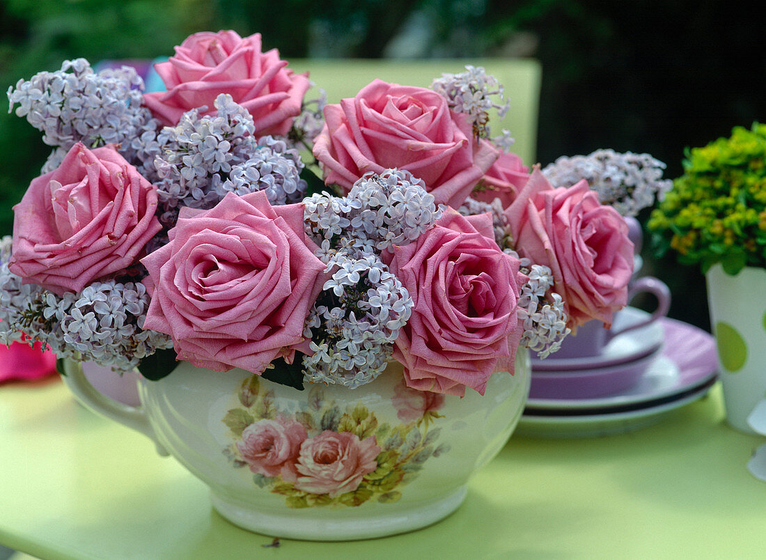 Roses and lilac (Syringa) in a rose cup