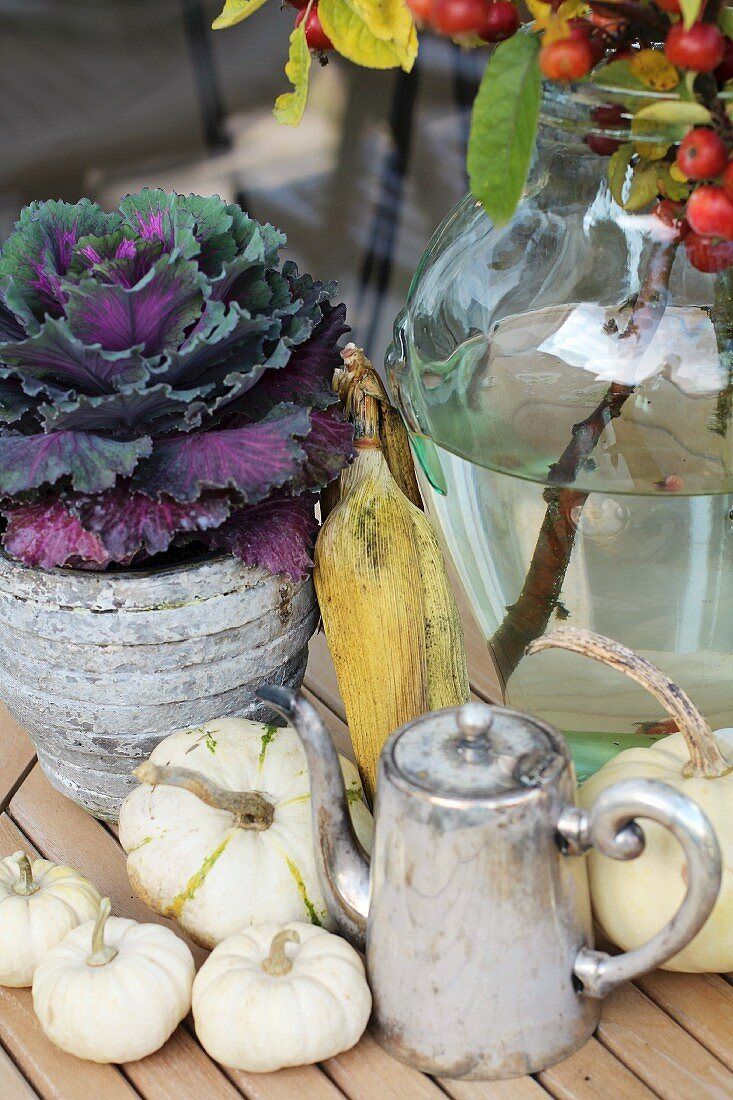 Autumnal arrangement of ornamental cabbage, corn cobs and squashes