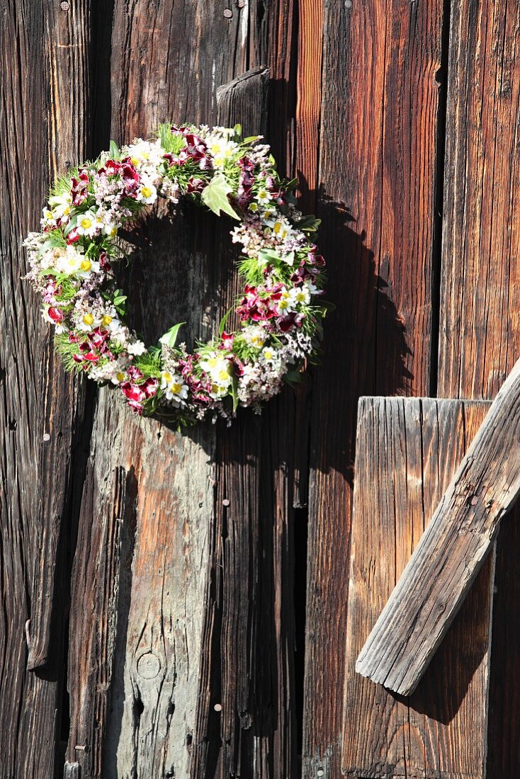 Wreath of sweet Williams and chamomile hung from board wall