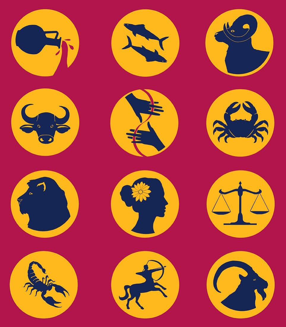Twelve signs of the zodiac