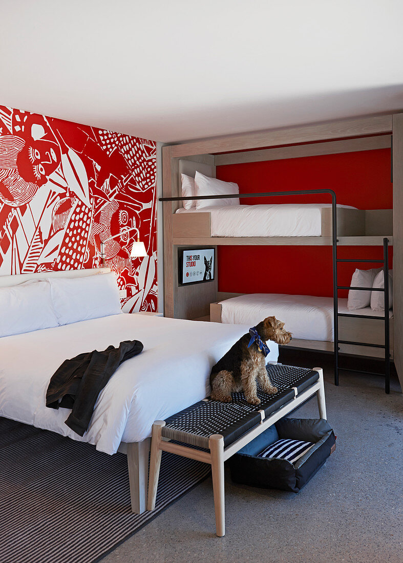 Picture of: Double Bed And Bunk Beds In Modern Hotel Buy Image 12429405 Living4media