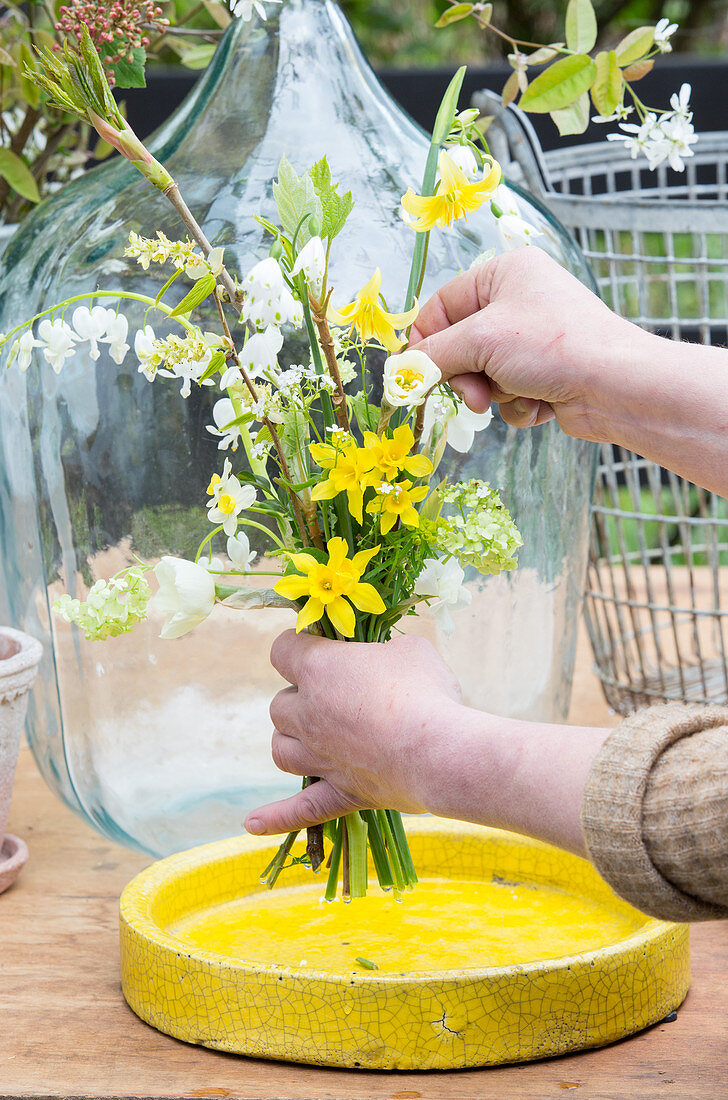 Tying a bouquet of narcissus