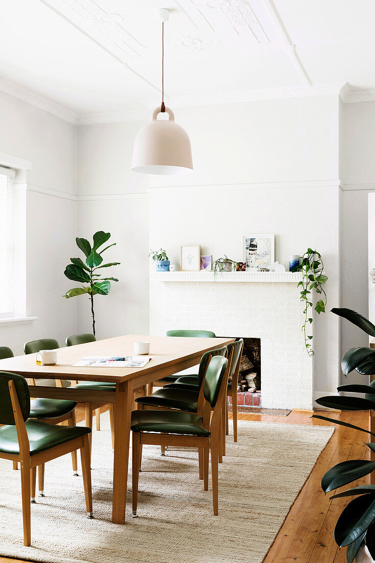 Table and chairs in front of fireplace and houseplant in white dining room