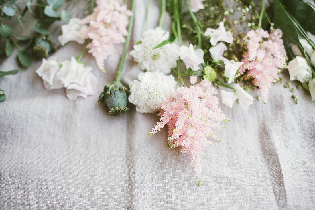 Delicate pink and white flowers and poppy seed heads