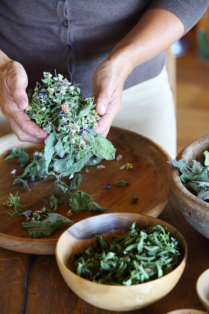 Hands mixing dried flowers and leaves to make herbal tea
