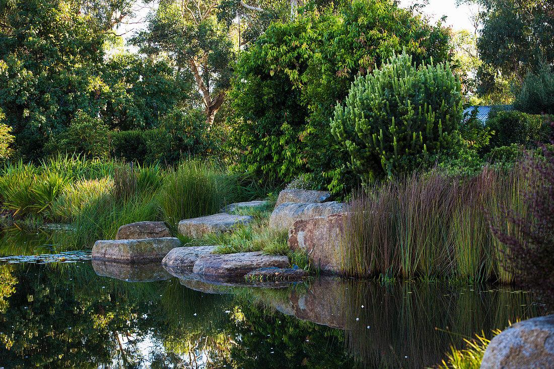 Garden pond with rocks in densely overgrown gardens