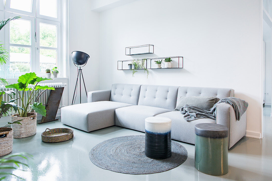 Pale grey sofa and houseplants in living room of period apartment