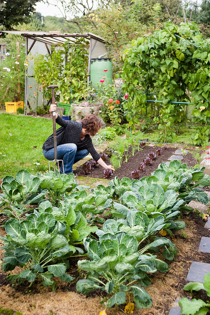 Woman working in vegetable patch