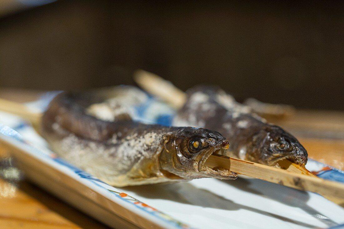 Gegrillte Bachforellen, Robata Grill Restaurant, Hakobune, Japan