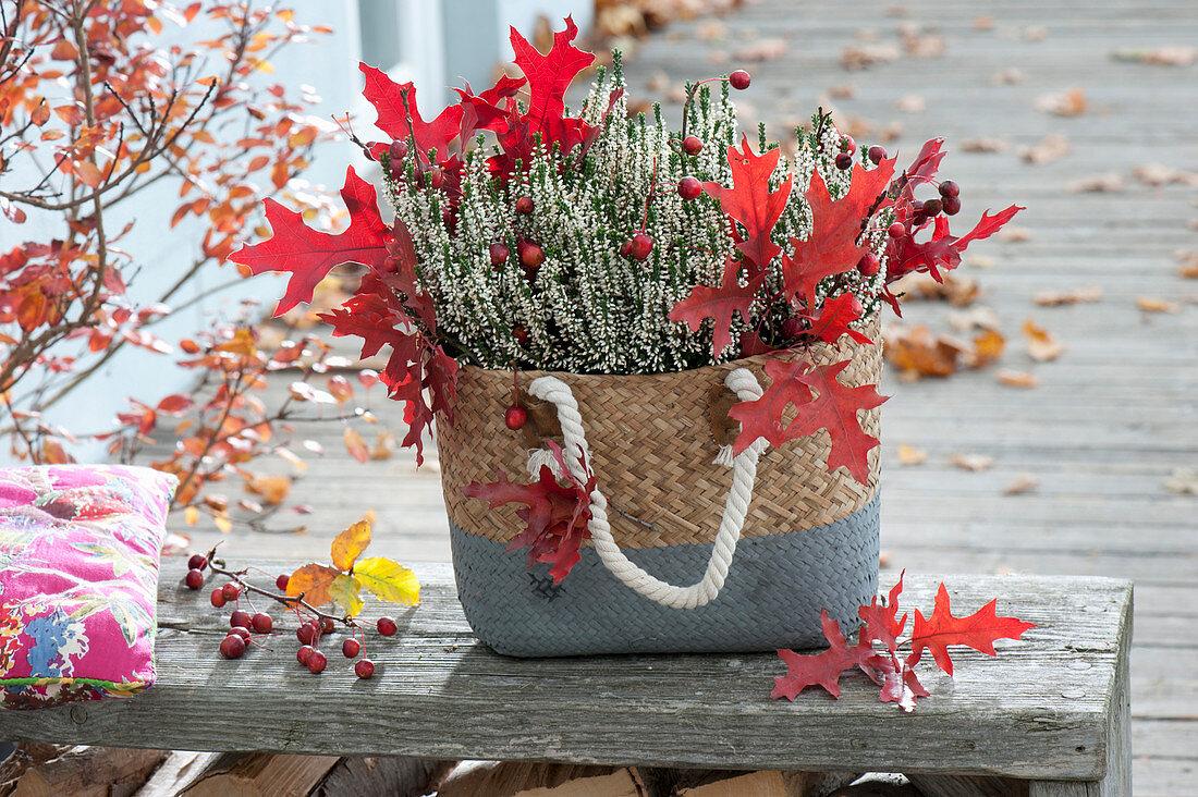 Basket bag with Calluna vulgaris Garden Girls 'Alicia'
