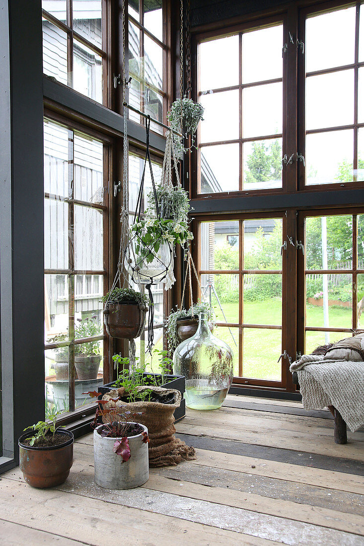 A hanging basket and a balloon bottle in a glass house