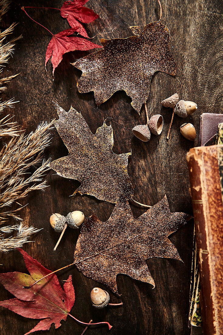 Dried autumn leaves and acorns