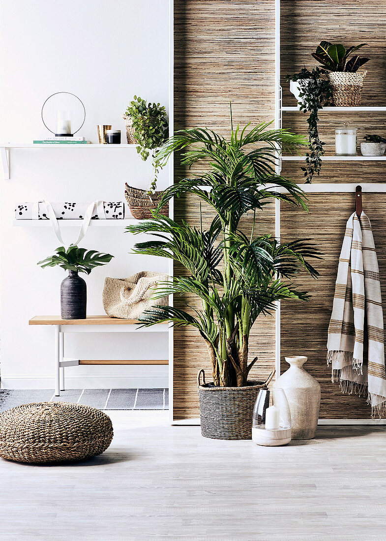 Shelf with wellness utensils and house plants