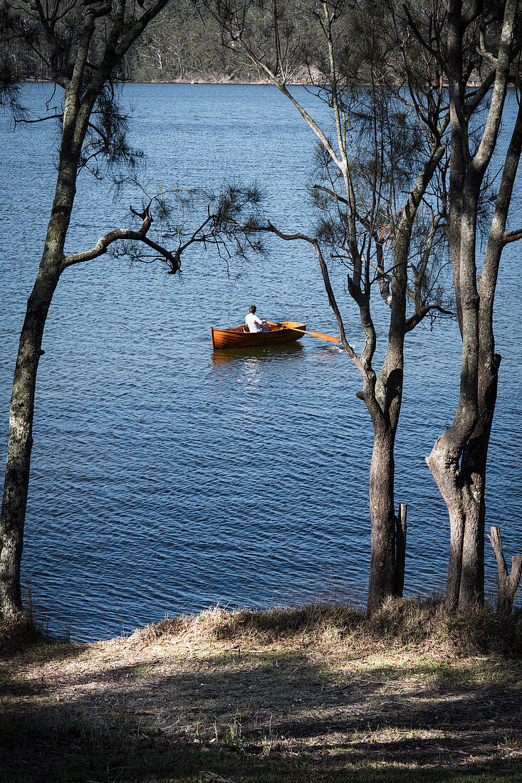 View through pine trees to a lake with rowing boat