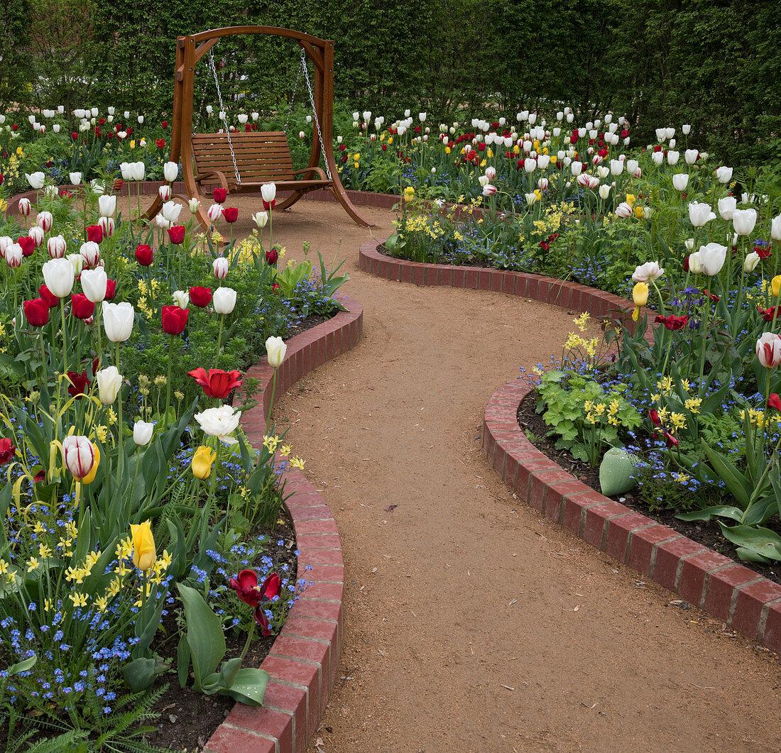 Garden swing amongst beds of multicoloured tulips
