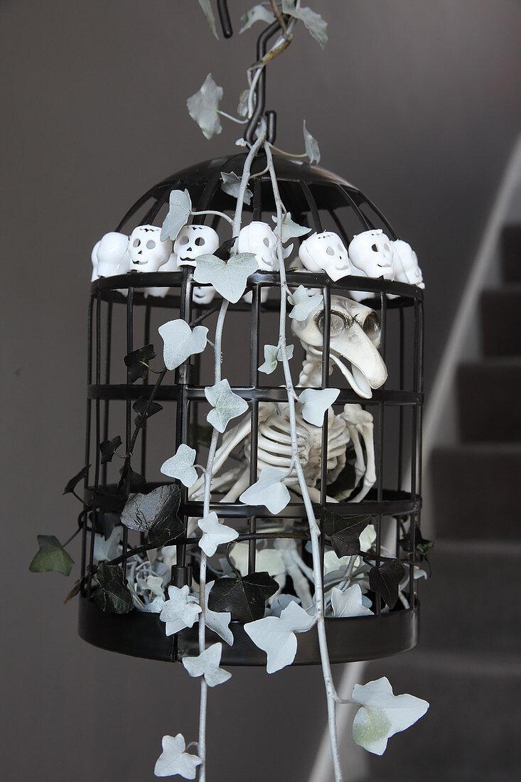 DIY Halloween decoration: bird skeleton in cage