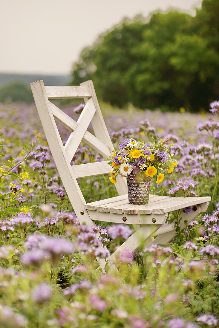 Posy of dyers' chamomile, ox-eye daisies and scabious on wooden chair in field of purple tansy