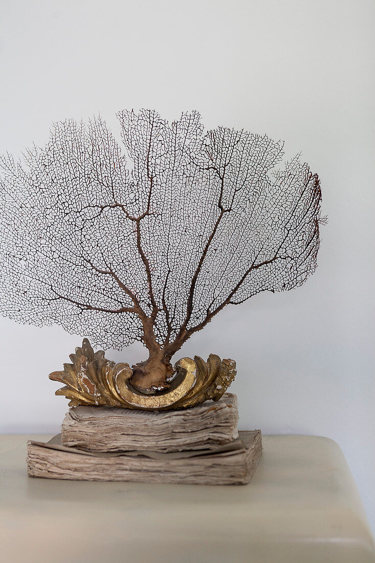 Coral ornament