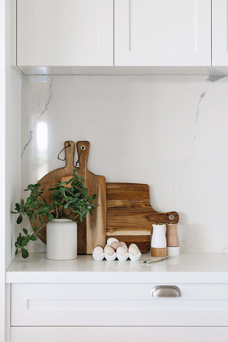 Green plant, fresh eggs, salt and pepper shakers and wooden boards on a white kitchen cabinet