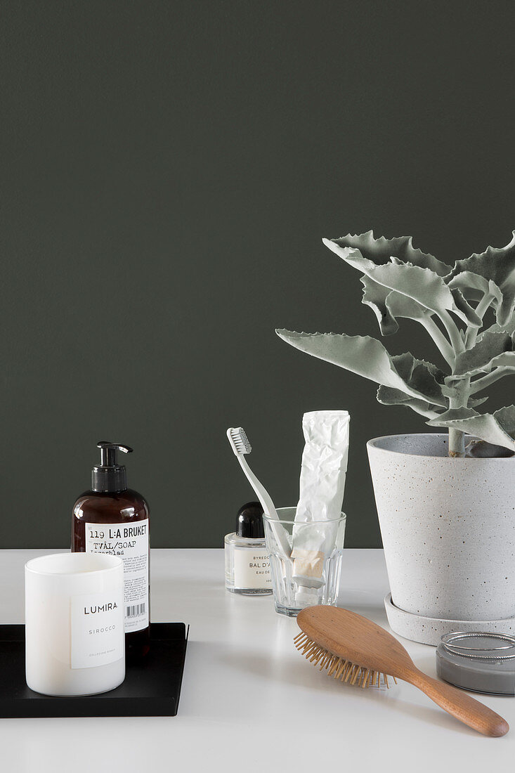 Simple bathroom utensils and potted kalanchoe against dark green wall