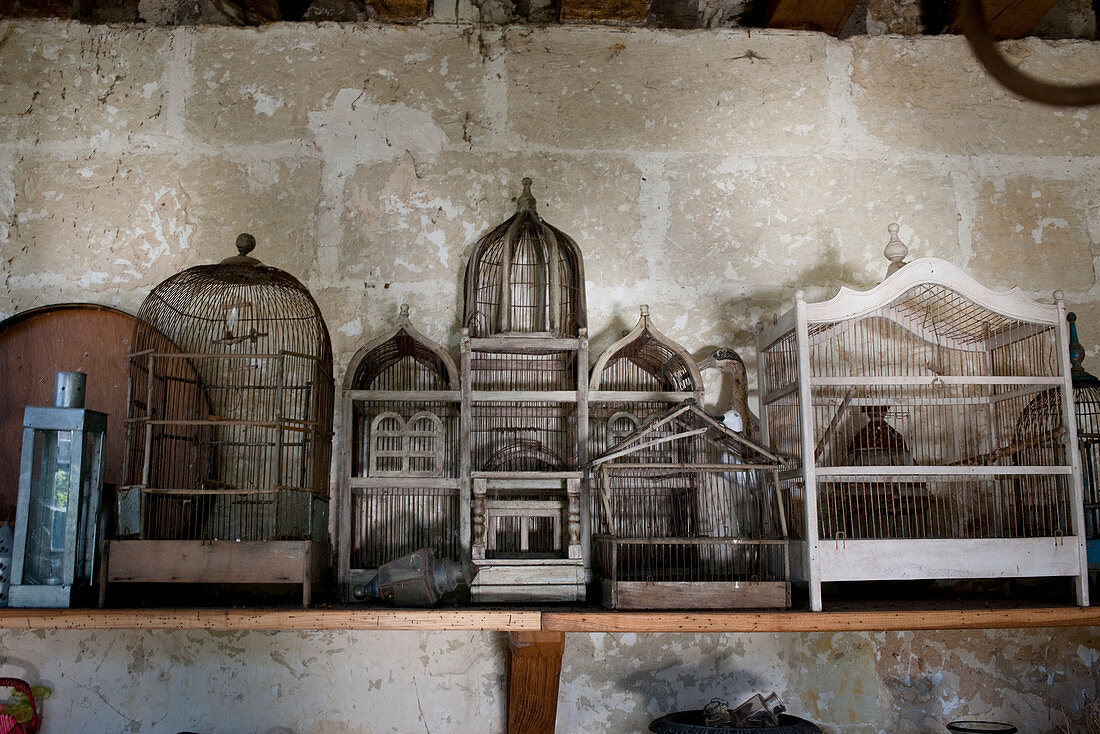 Antique birdcages on shelf