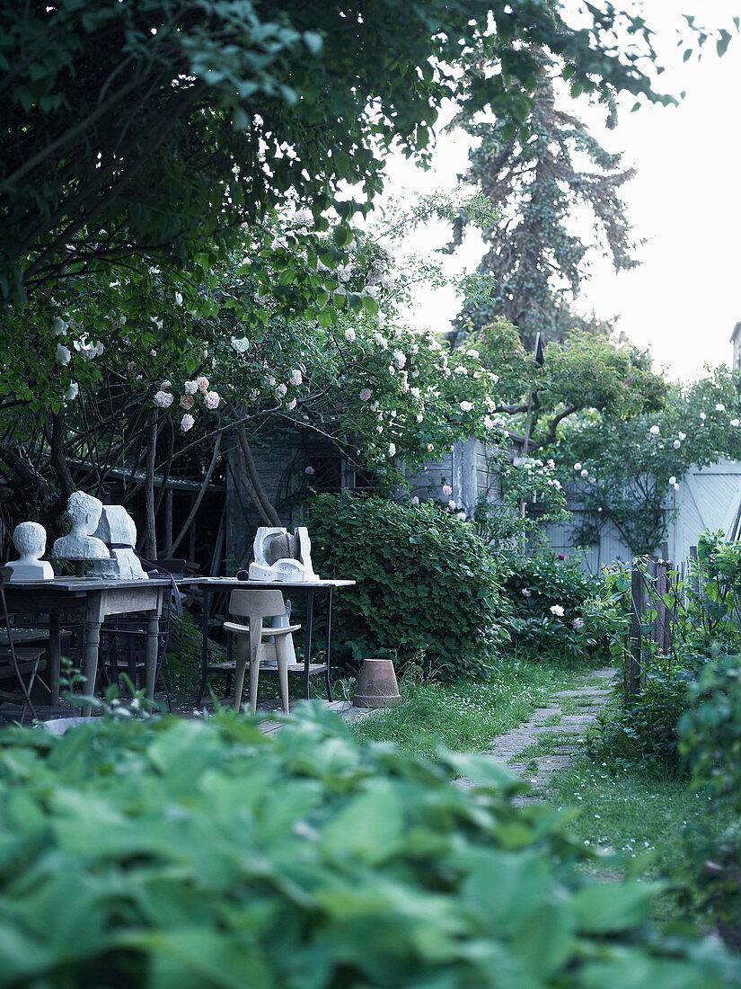 Climbing roses in small, natural-style urban garden