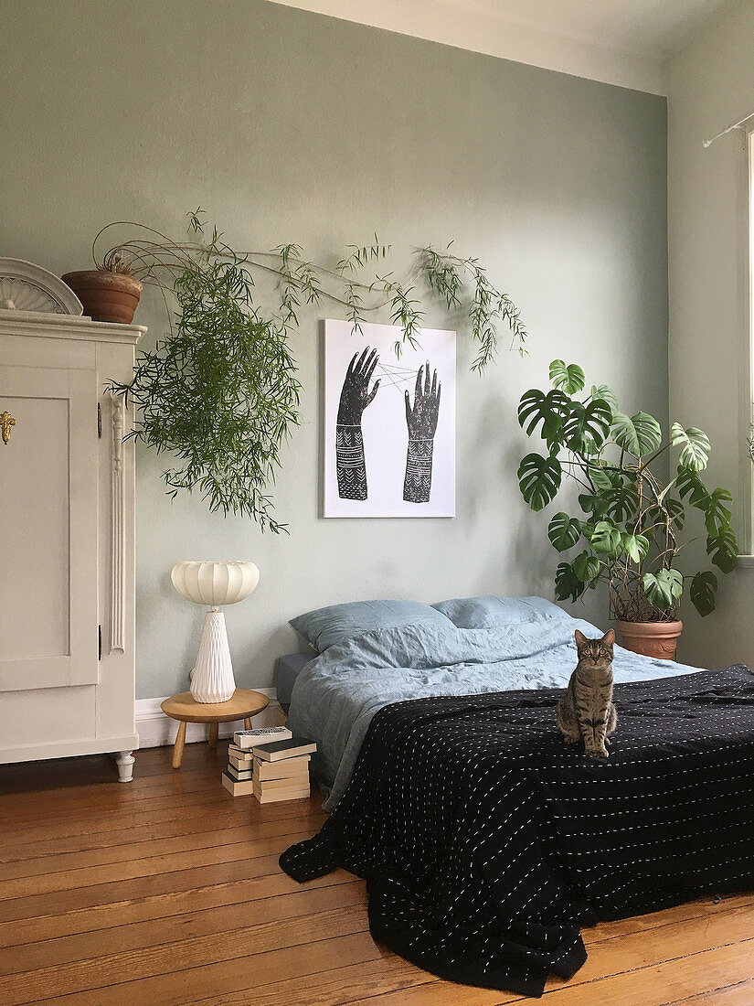 Cat on bed and large houseplants in simple bedroom