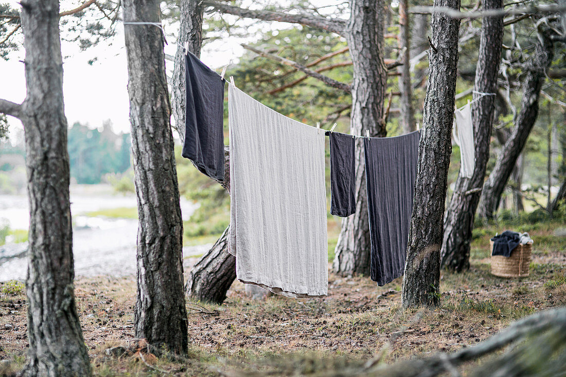 White and blue laundry hung on washing line strung between trees