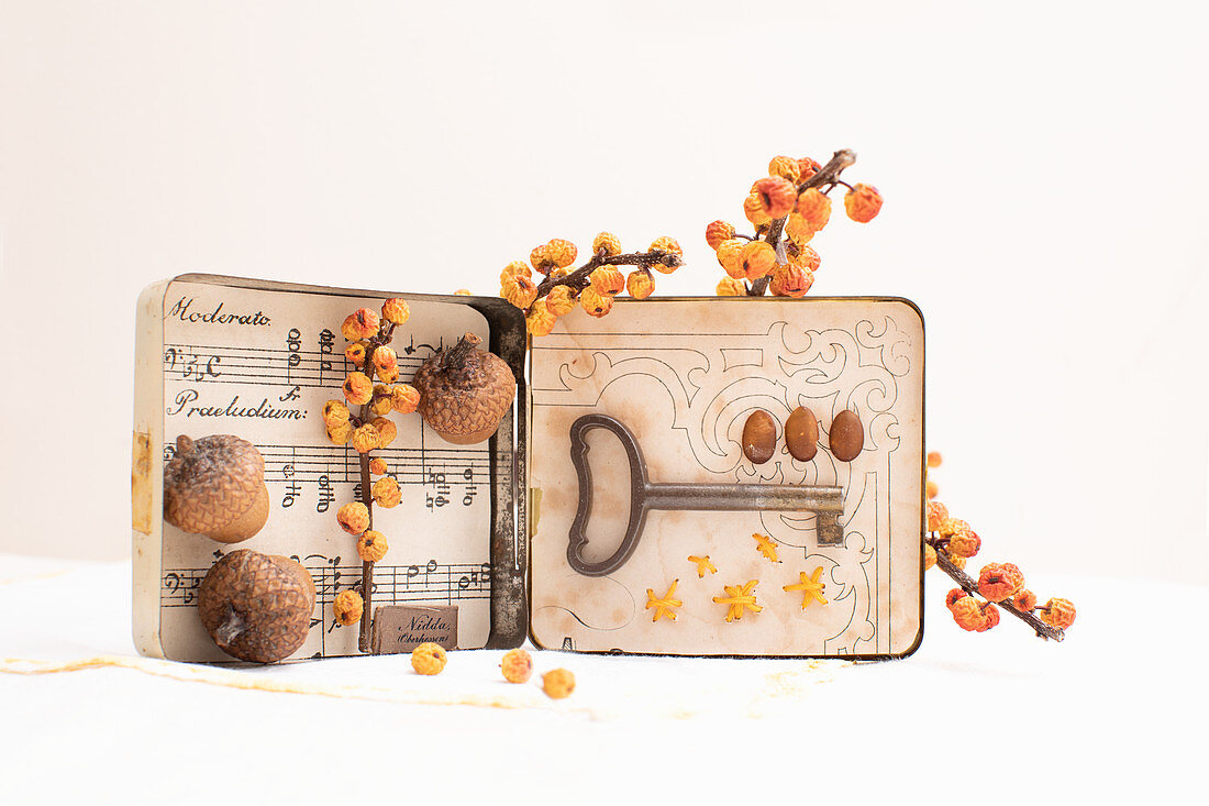 Old tin decorated with sheet music, acorns, berries and key