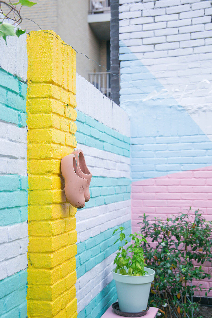 Brightly painted brick wall of urban courtyard garden