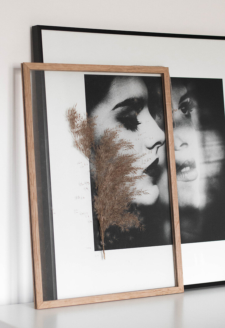 Pressed plant sprig between plates of glass in frame in front of portrait of woman