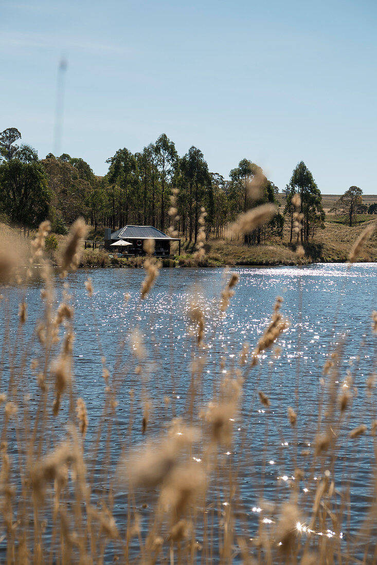 View across lake to wooden cabin on edge of woods