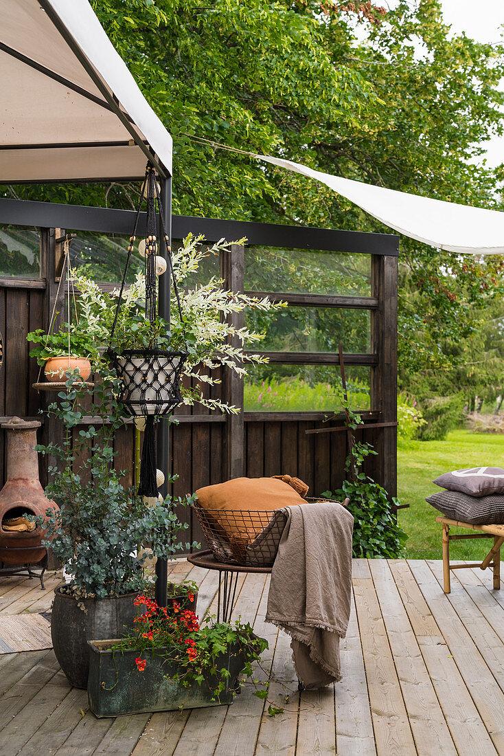 Pflanztöpfe auf gemütlicher Terrasse mit … – Bild kaufen ...