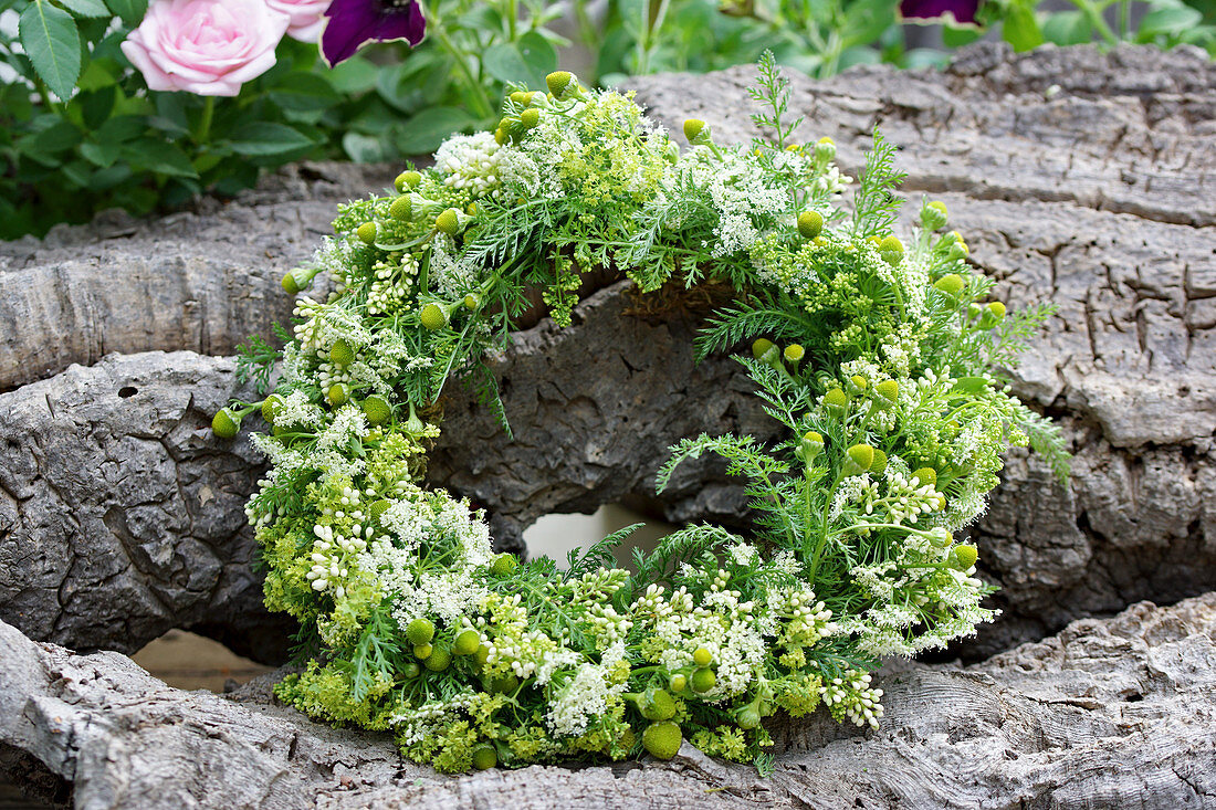 Wreath of privet flowers, wild chamomile, and yarrow leaves