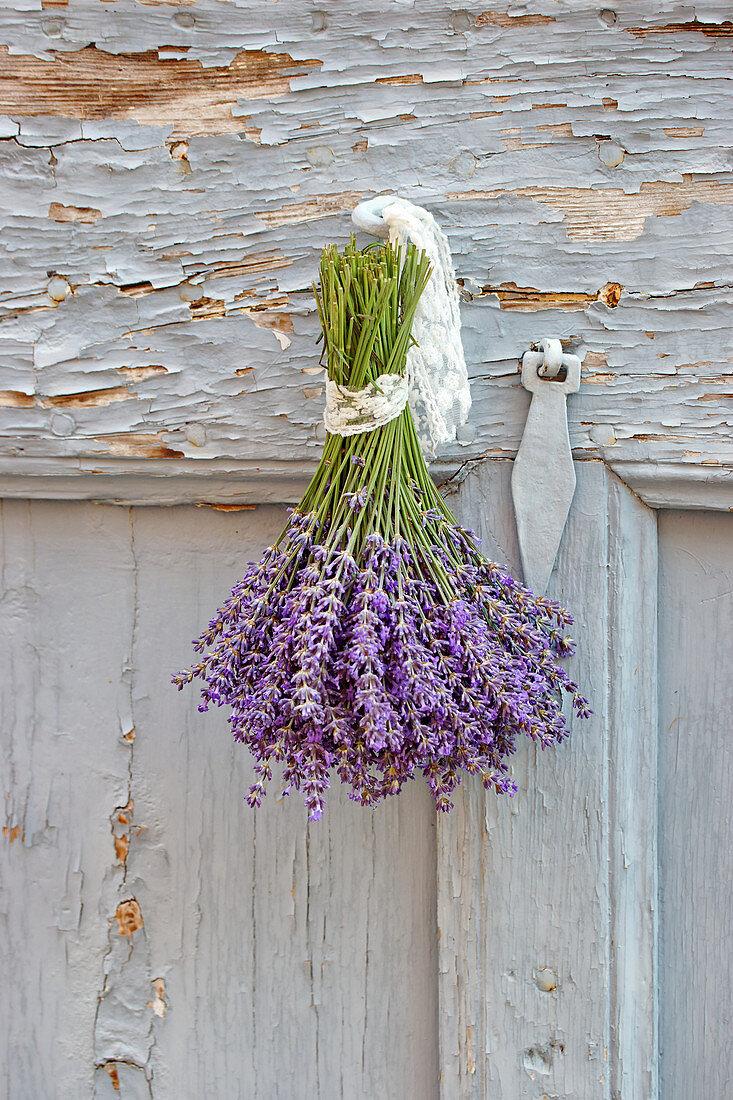 Lavendelstrauß zum Trocknen aufgehängt