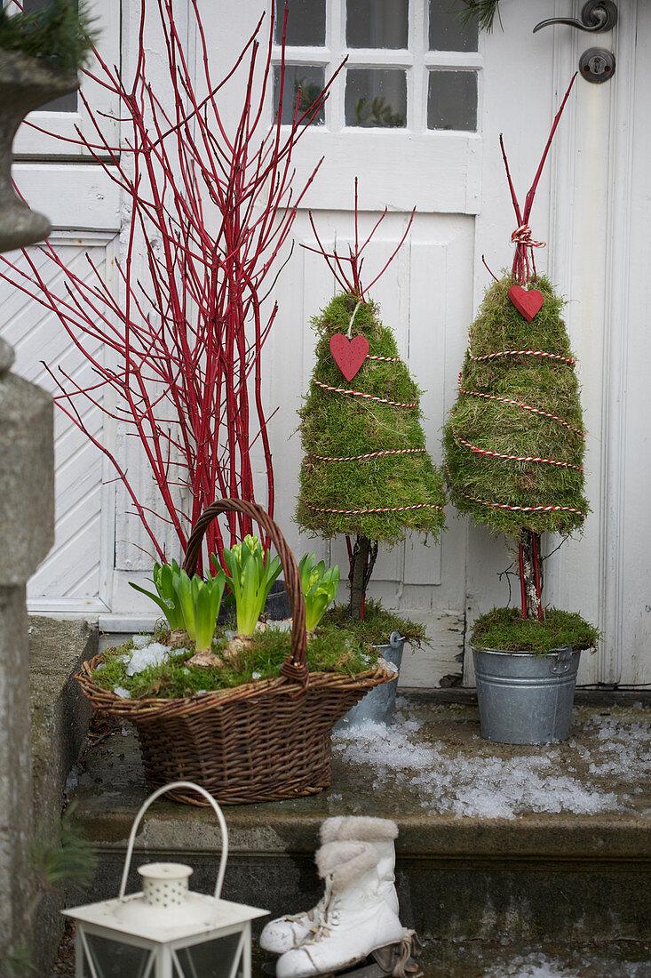 Korb mit Hyazinthen und Zweigen von Korallenhartriegel und Moos-Bäumchen vor Hauseingang